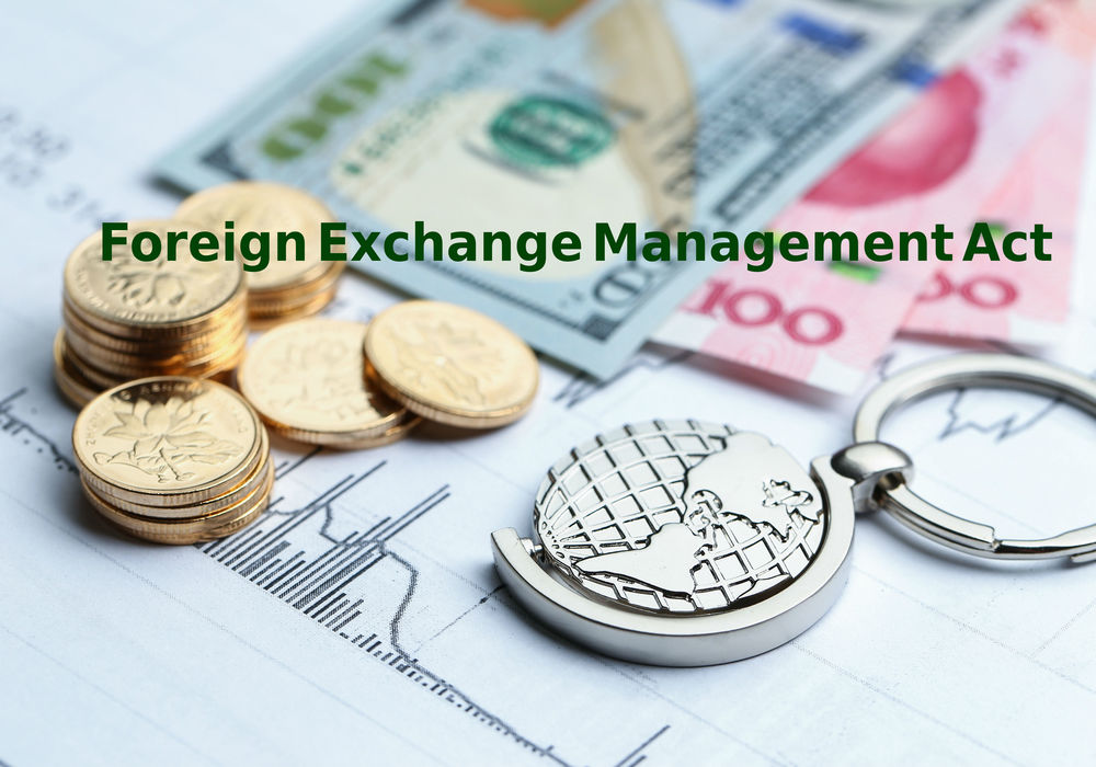 Pdf management foreign exchange act